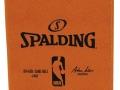 Spalding NBA Pad Holder