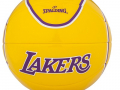 NBA Mini Playerball Lebron James