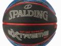 NBA Extreme SGT